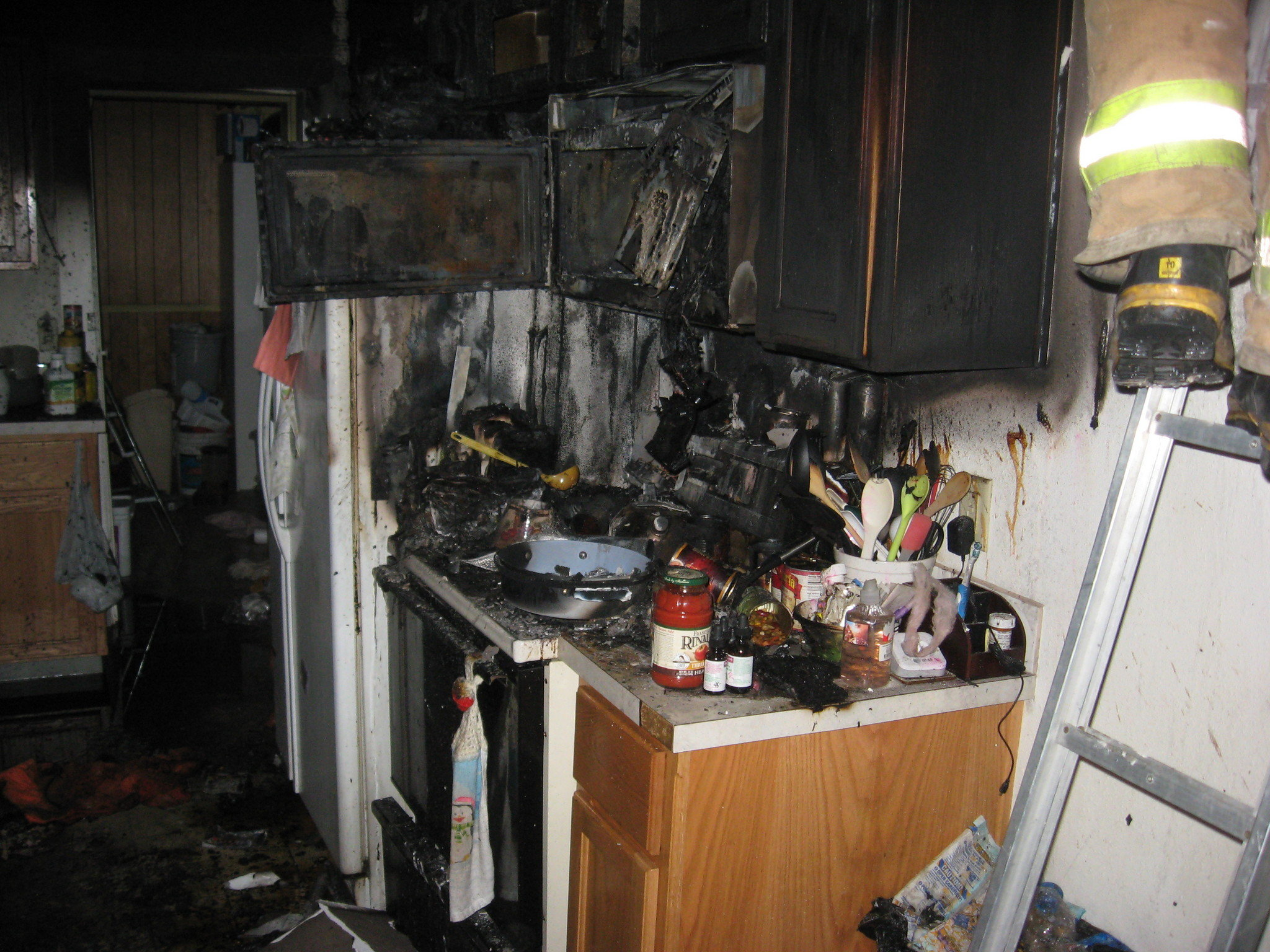 Elephant Ears To Blame For Clark County House Fire That