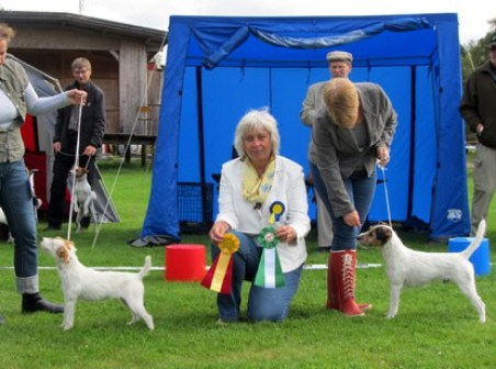 Tånga Hed 2011-08-28BIR>Edison's Swedish DivaBIM Rustic Russell P. BelvedereDomare Ingrid Borchorst,DK