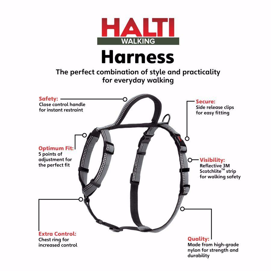 pet harness keywords