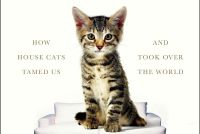 'The Lion in the Living Room': Why cats R Us - Philly
