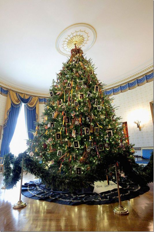 390 best Christmas ~ White House images on Pinterest Christmas - simple christmas tree decorating ideas