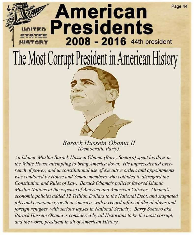 10964 best Obamau0027s America images on Pinterest Politics, Liberal - president job description