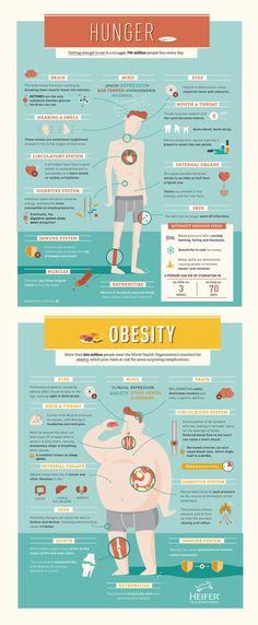 24 best Infographics images on Pinterest Info graphics - web flyer