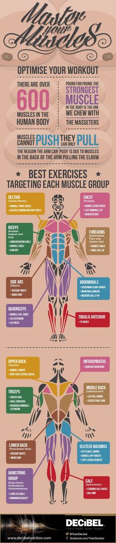 111 best FITNESS images on Pinterest Circuit workouts, Workouts - beast workout sheet