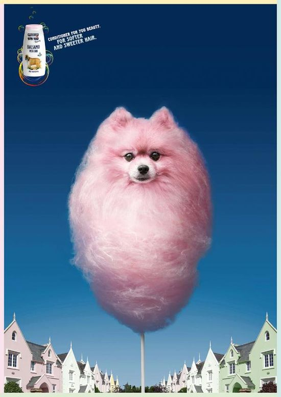 101 best Perros publicitarios - Advertising dogs images on - lost dog flyer examples