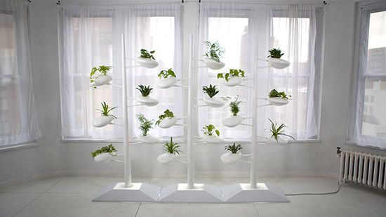 103 best Vertical Garden images on Pinterest Potager garden - der vertikale garten live screen danielle trofe