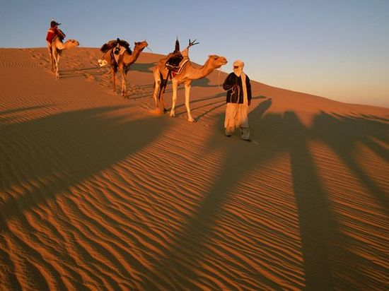 17 best Sahara images on Pinterest Deserts, Africa and Desert life - land form