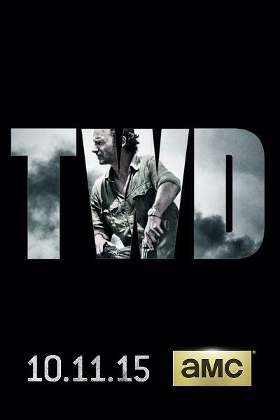 189 best The Walking Dead images on Pinterest Andrew lincoln - publicity release form
