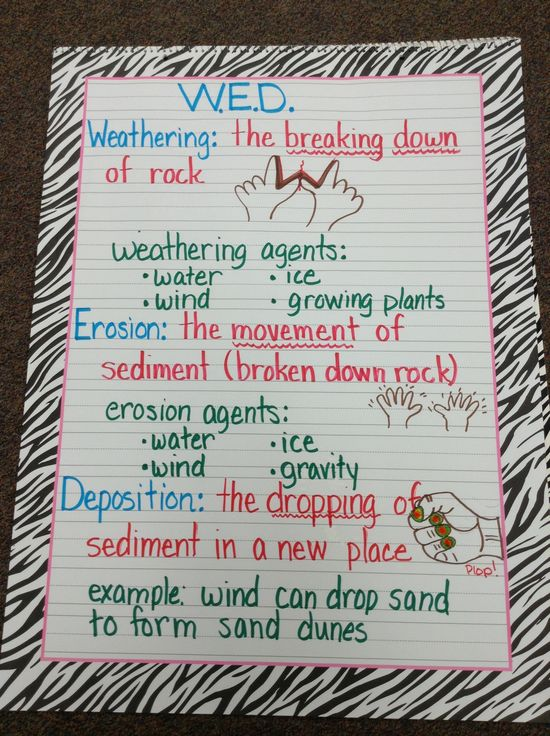 100 best Anchor Charts images on Pinterest Teaching ideas - privacy act release form