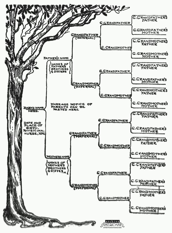 258 Best Genealogy Images On Pinterest Family Tree Chart, Family   Example  Of Share Certificate  Example Of Share Certificate