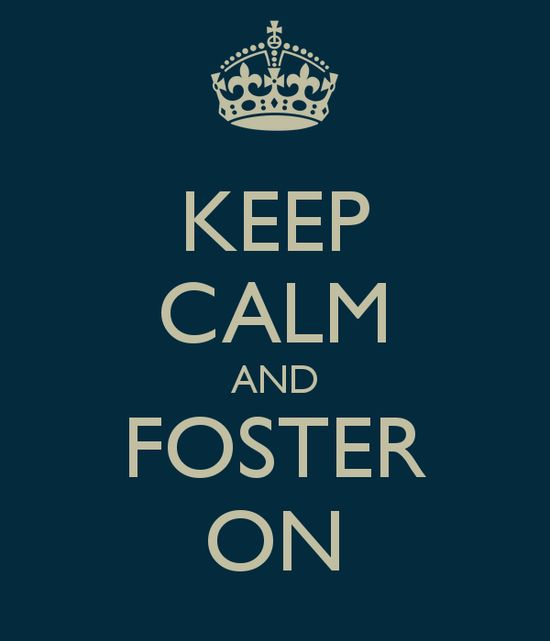 161 best Foster Care images on Pinterest Foster care, Foster - another word for babysitter