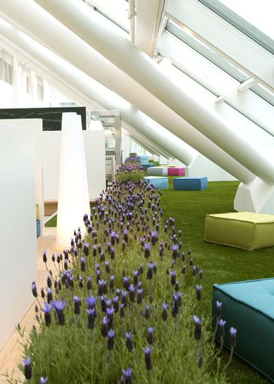 157 best Green Indoors images on Pinterest Office designs, Green - innovatives interieur design microsoft