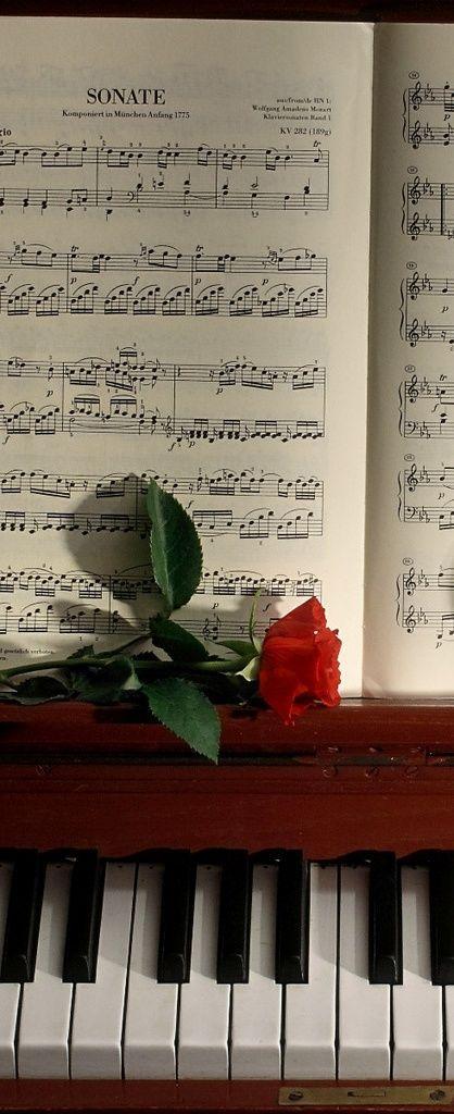 254 best Art and Music images on Pinterest La la la, Funny stuff - piano chord chart