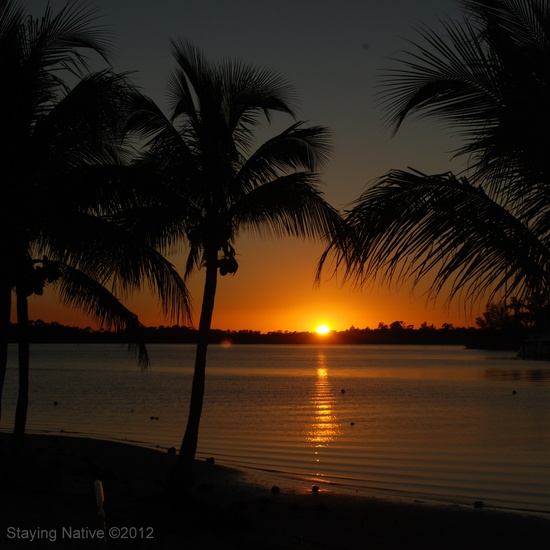 1705 best Florida images on Pinterest Vacation, Florida and Viajes - city of sunrise jobs