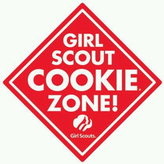 240 best Cookie time images on Pinterest Girl scouts, Girl scout - safety program