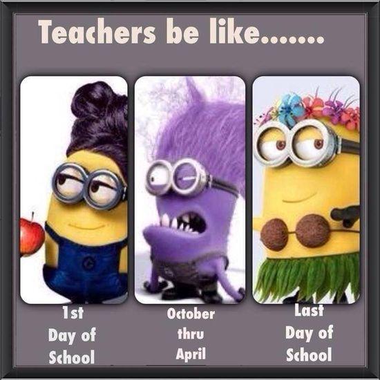 332 best Art Rm Funny! images on Pinterest Funny teachers - cover letter for substitute teacher