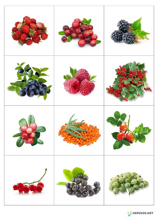 104 best Gyümölcsök images on Pinterest Fruit, Preschool and - sticker chart