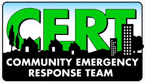 113 best CERT ( Comm Emergency images on Pinterest Medical - resume latex template