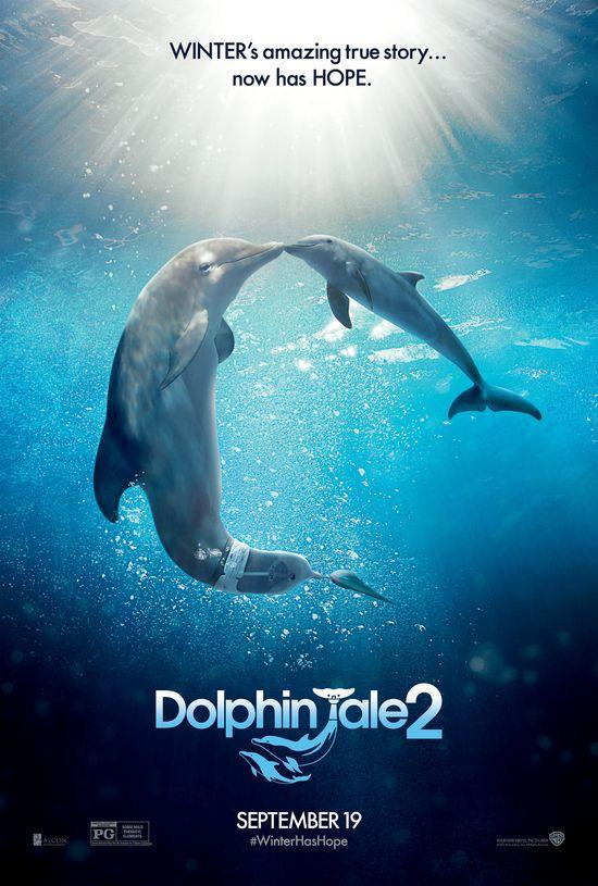 115 best Dolphin Tail images on Pinterest Dolphins, Aquariums - marine biologist job description