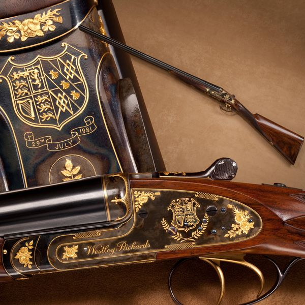 301 best Weapons images on Pinterest Firearms, Hand guns and - gun bill of sale