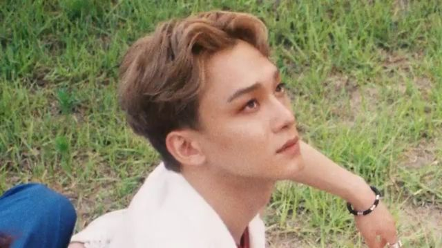 190 best Kim Jongdae images on Pinterest Exo chen, Dinosaurs and - next line küchen