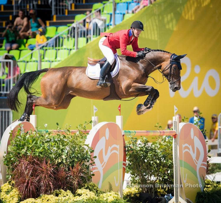 622 best Show jumping images on Pinterest Equine photography - equine release form