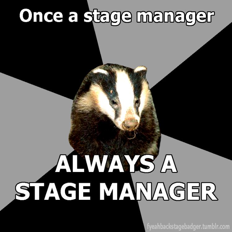 108 best Stage Management! images on Pinterest Musical theatre - actors resume format