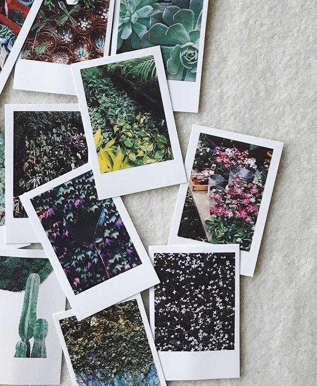 386 best Polaroids images on Pinterest Polaroid ideas, Friend - polaroid template