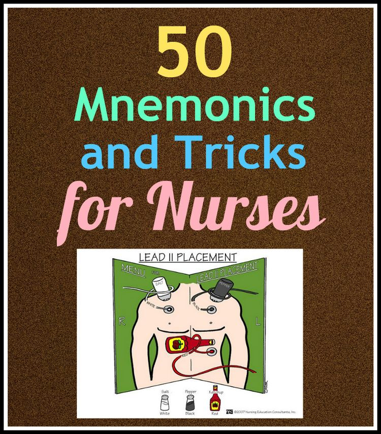 100 best MEDS images on Pinterest Nursing schools, Nursing - p amp amp l statement sample