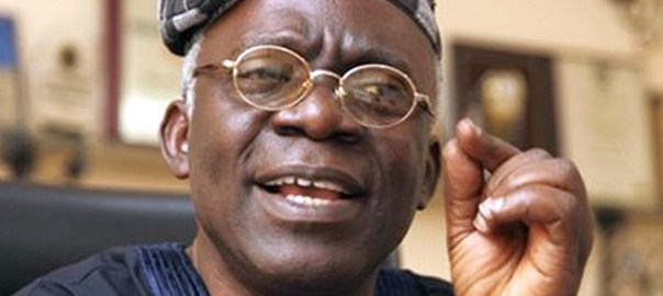 Femi Falana Photo credits: Newsbreakers