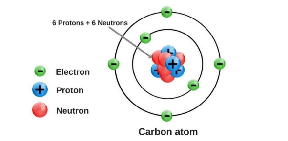 What kinds of bonds are contained in unsaturated fatty acids? - ProProfs - carbon bonds