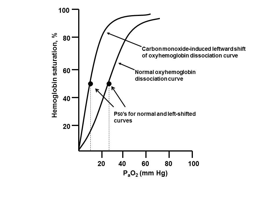 Thermal Injury and Smoke Inhalation