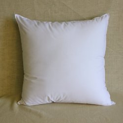 Small Of 18x18 Pillow Insert