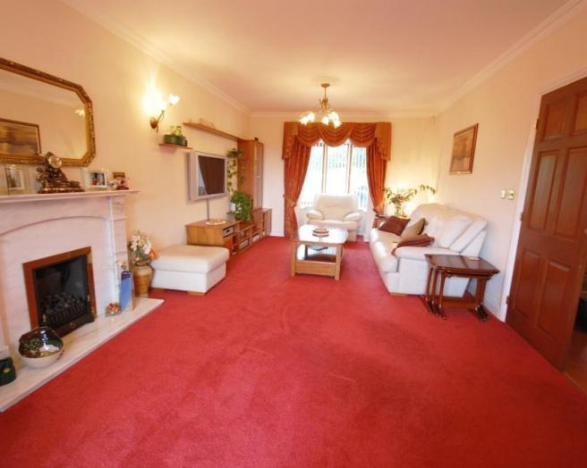 Red Carpets For Living Room