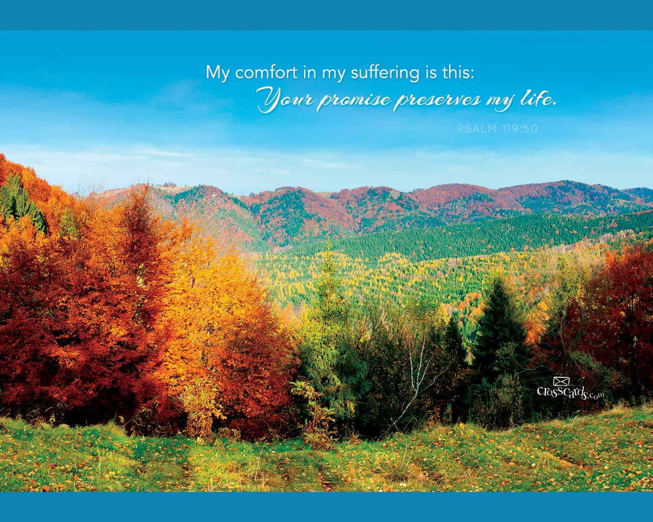 Free Fall Scripture Wallpaper Psalm 119 50 Bible Verses And Scripture Wallpaper For