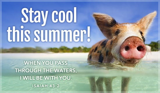 Animated Wallpaper For Mobile Phone Gif Stay Cool Isaiah 43 2 Ecard Free Summer Cards Online