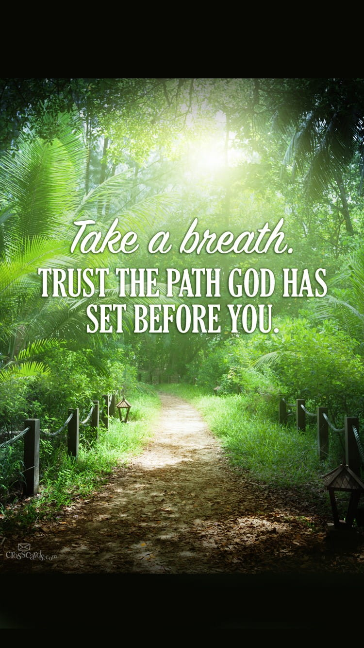 Christian Fall Iphone Wallpaper Trust God S Path Desktop Wallpaper Free Backgrounds