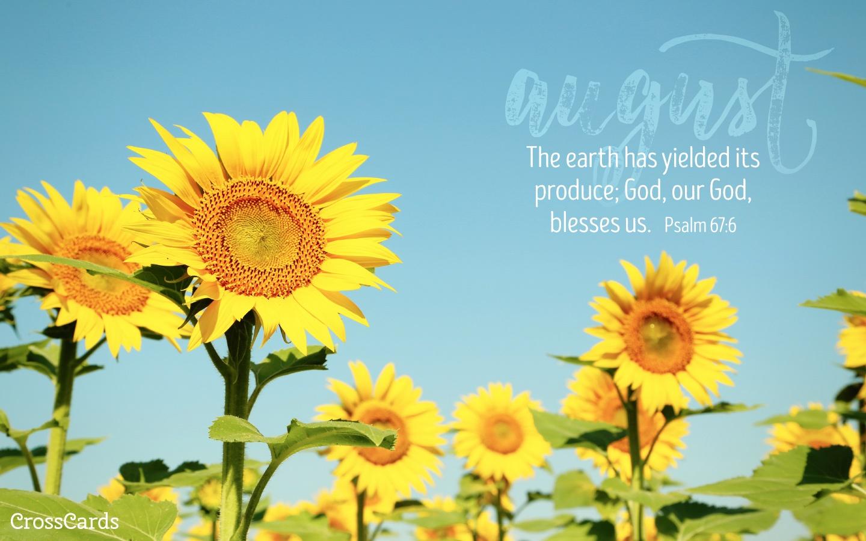 Christian Fall Desktop Wallpaper August 2016 Sunflowers Desktop Calendar Free August