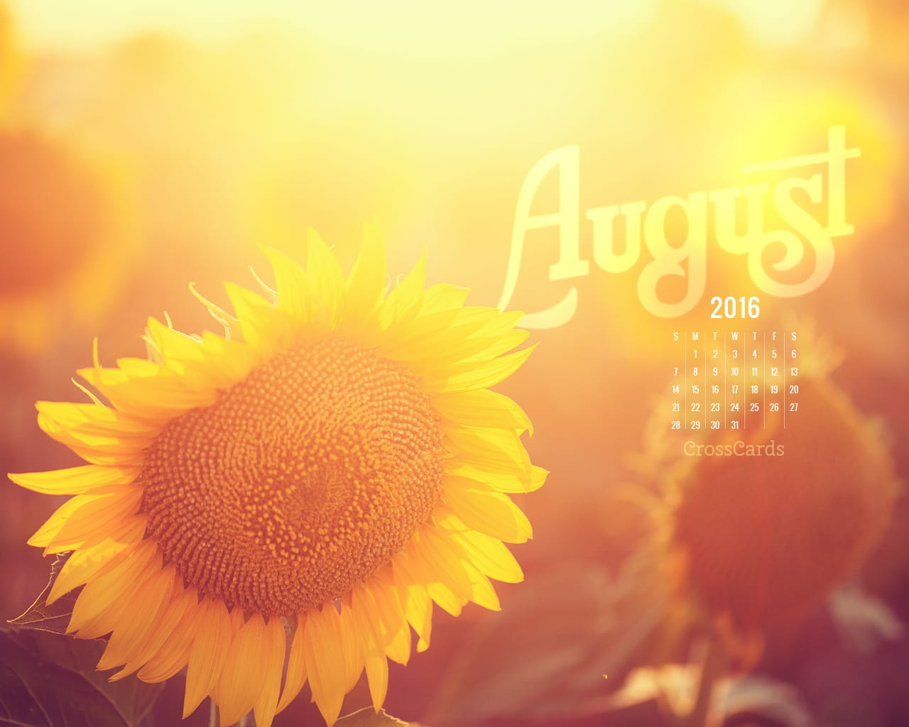 Free Download Wallpapers Of Friendship Quotes August 2016 Sunflower Desktop Calendar Free August