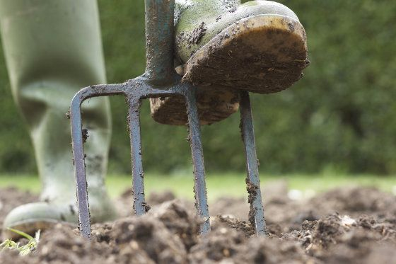 How To Prepare Soil For A Garden - 2 Different Ways
