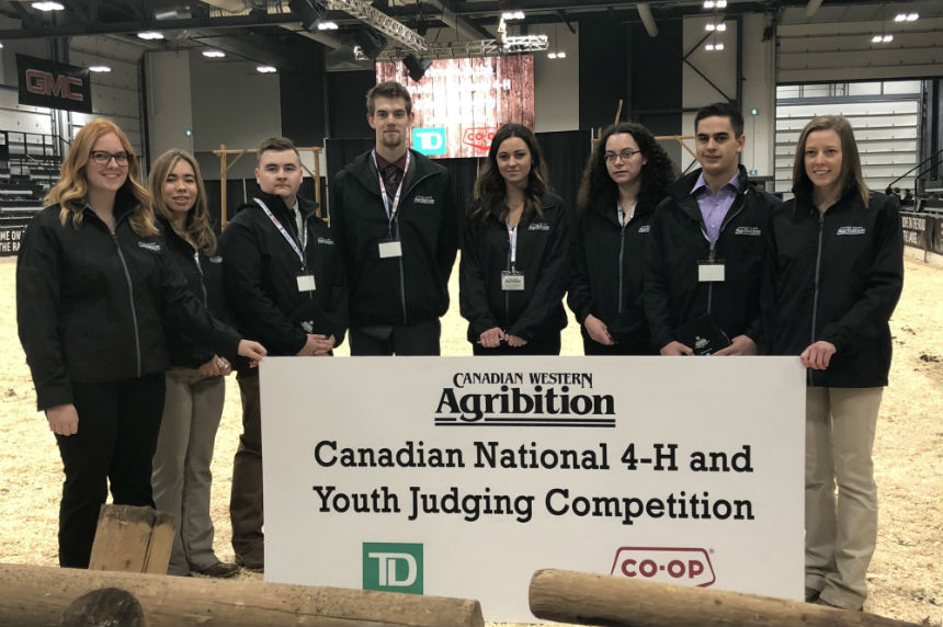 Livestock judging competition helps teens beef up resume 980 CJME