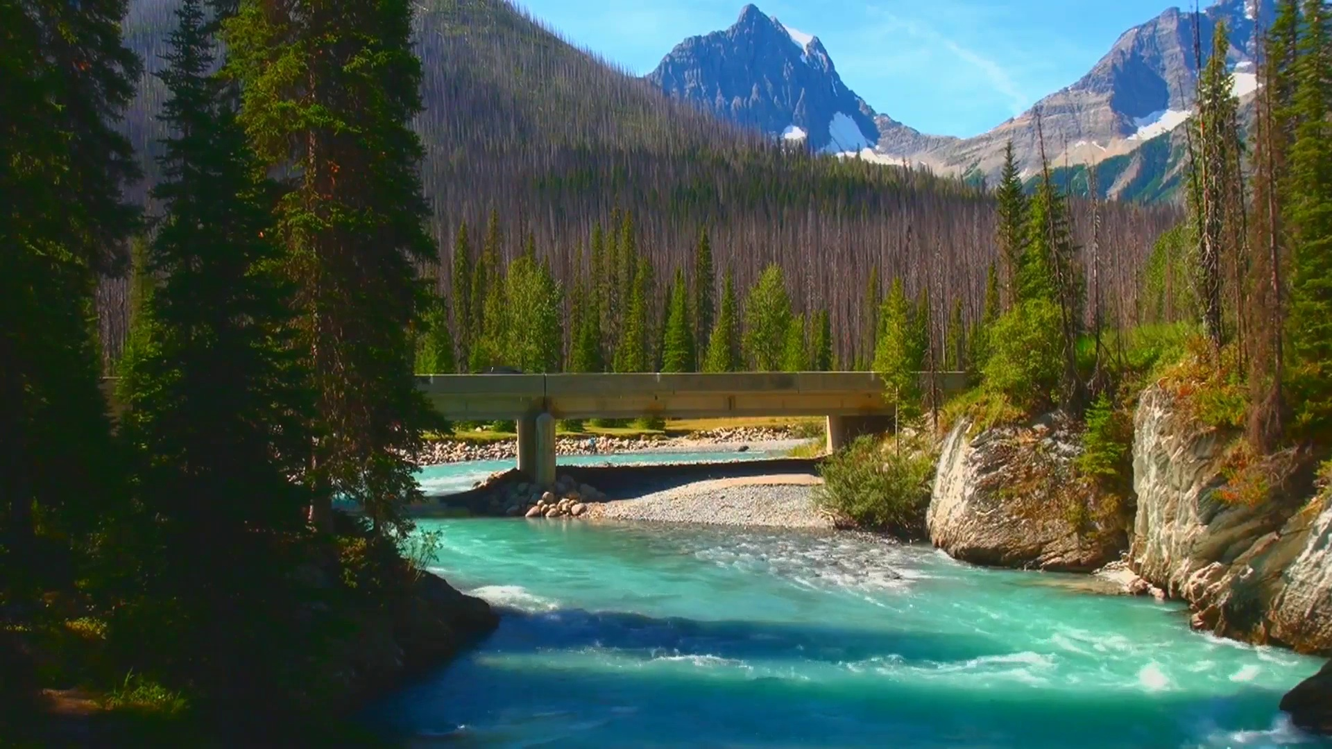 Numa Falls Wallpaper Mp Stetski Displeased With Parks Canada Infrastructure
