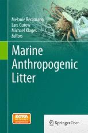 Micro- and Nano-plastics and Human Health SpringerLink