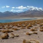 Vulkaner. Atacamaöknen