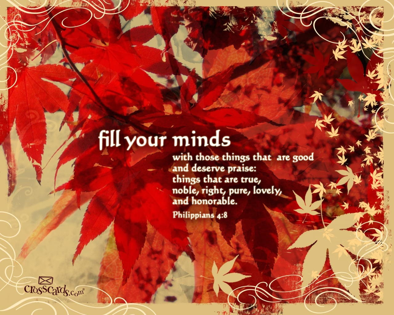 Free Fall Facebook Wallpaper Fill Your Minds Bible Verses And Scripture Wallpaper For