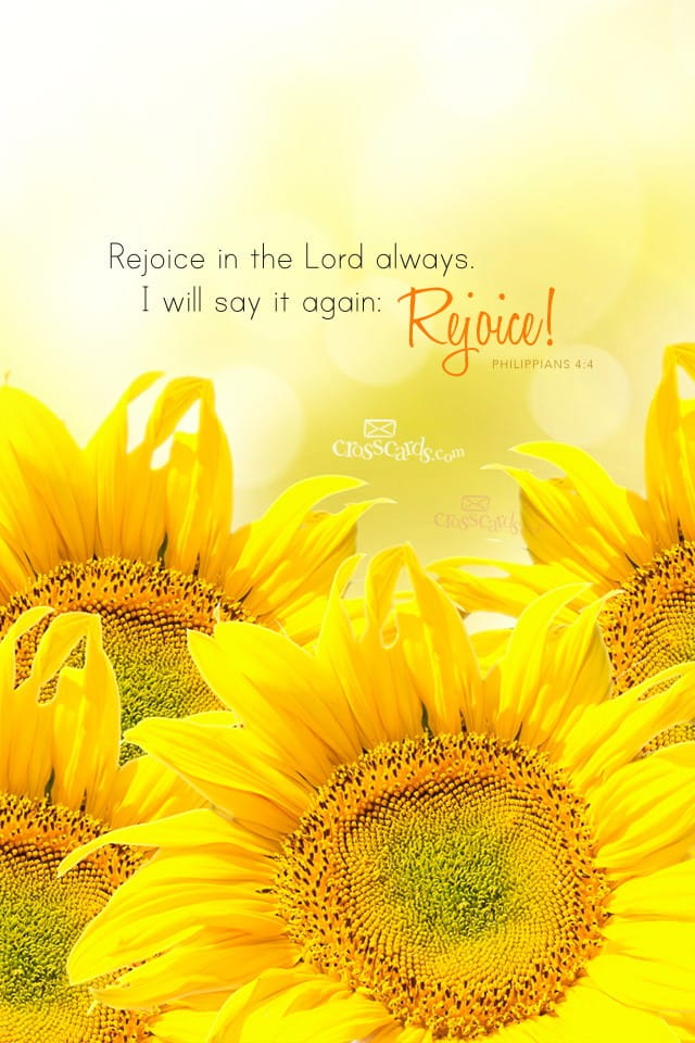 Christian Hd Wallpapers For Android Rejoice In The Lord Bible Verses And Scripture Wallpaper