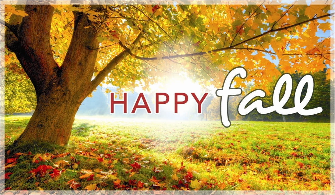 Autumn Tree Leaf Fall Animated Wallpaper Happy Fall Ecard Free Autumn Cards Online