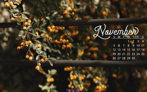 Free Desktop Wallpaper Scripture Fall November 2017 Fall Berries Desktop Calendar Free