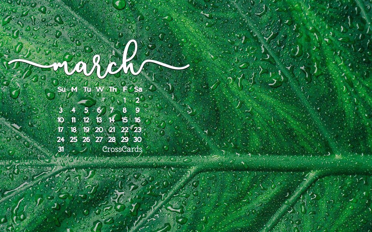 Cute Graffiti Wallpaper Calendar Background Wallpaper Free Desktop And Mobile