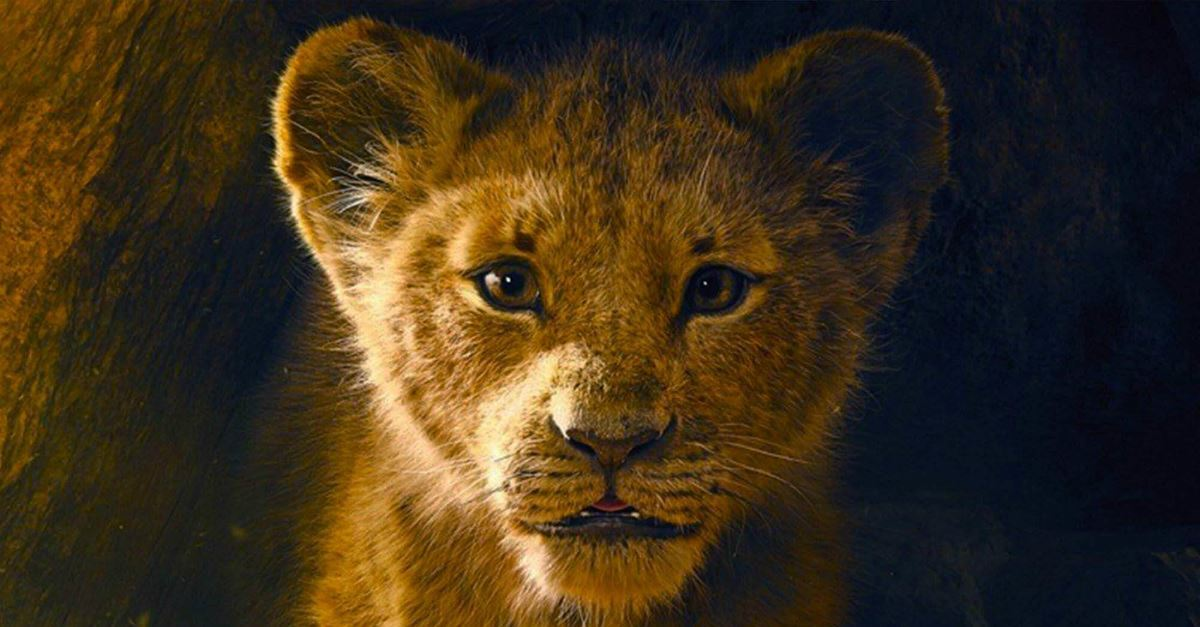 disney the lion king movie july 19 2019 trailer trailers 26